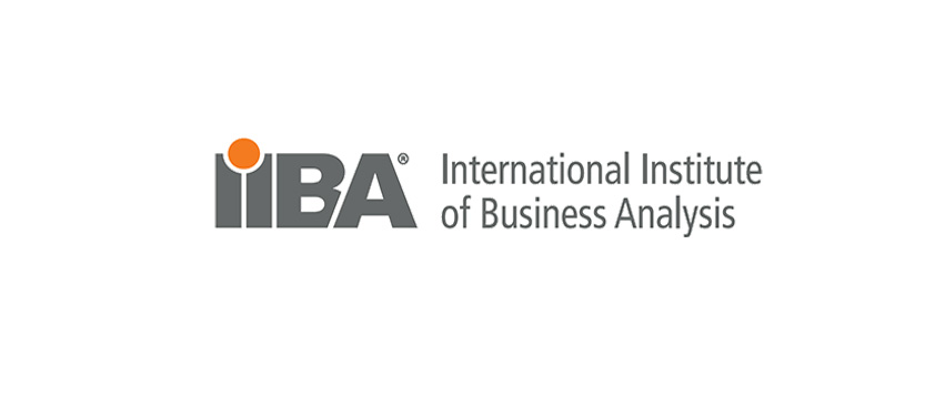 Business Analysis Process Guide In  Stages  BajobsCa